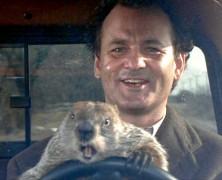 Il giorno della marmotta: le origini e il successo
