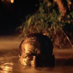 Inquadrature perfette: Apocalypse Now