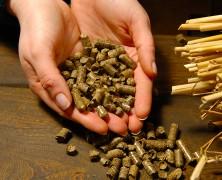 Acquisto di pellet prestagionale: conviene?